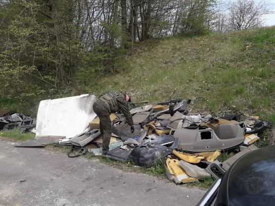 Większość ze śmieci w Nadleśnictwie Zaporowo sprzątnięto w pasie drogowym